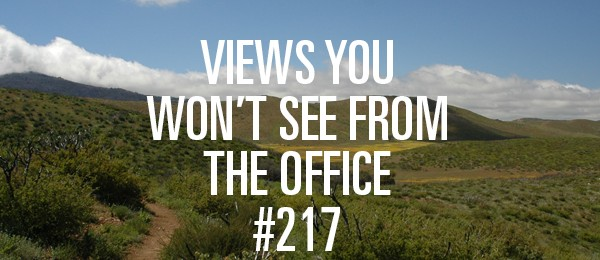 officeview_217